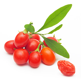 285x285_SLIDE_1_8_Healthy_Facts_about_Goji_Berries